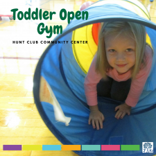 Toddler Open Gym