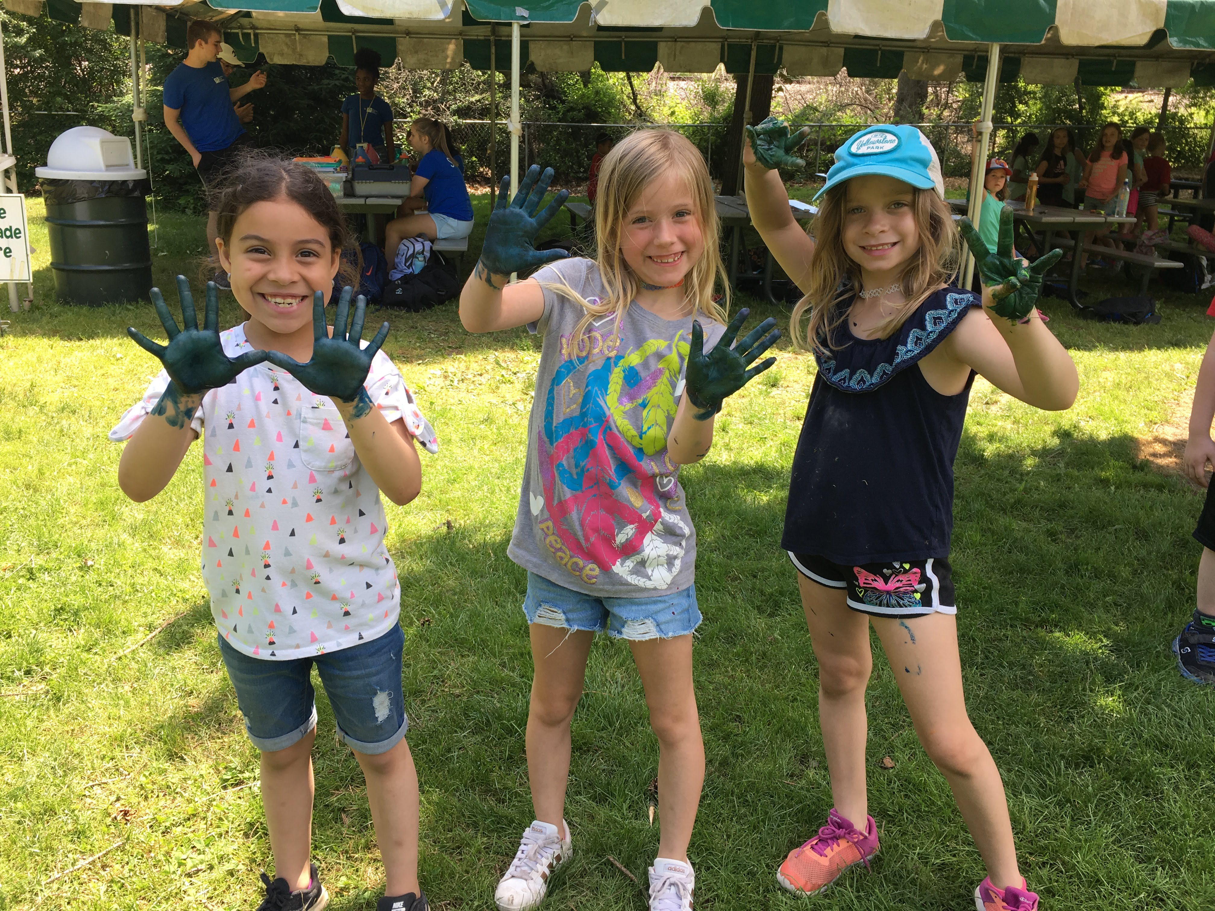 Viking Park summer camp in Gurnee