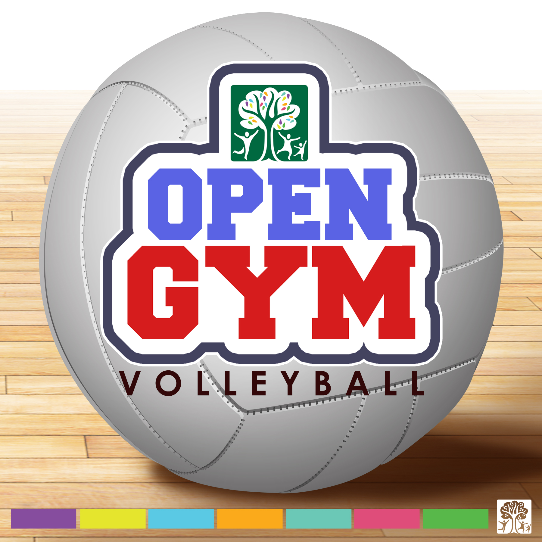 Open Gym Volleyball