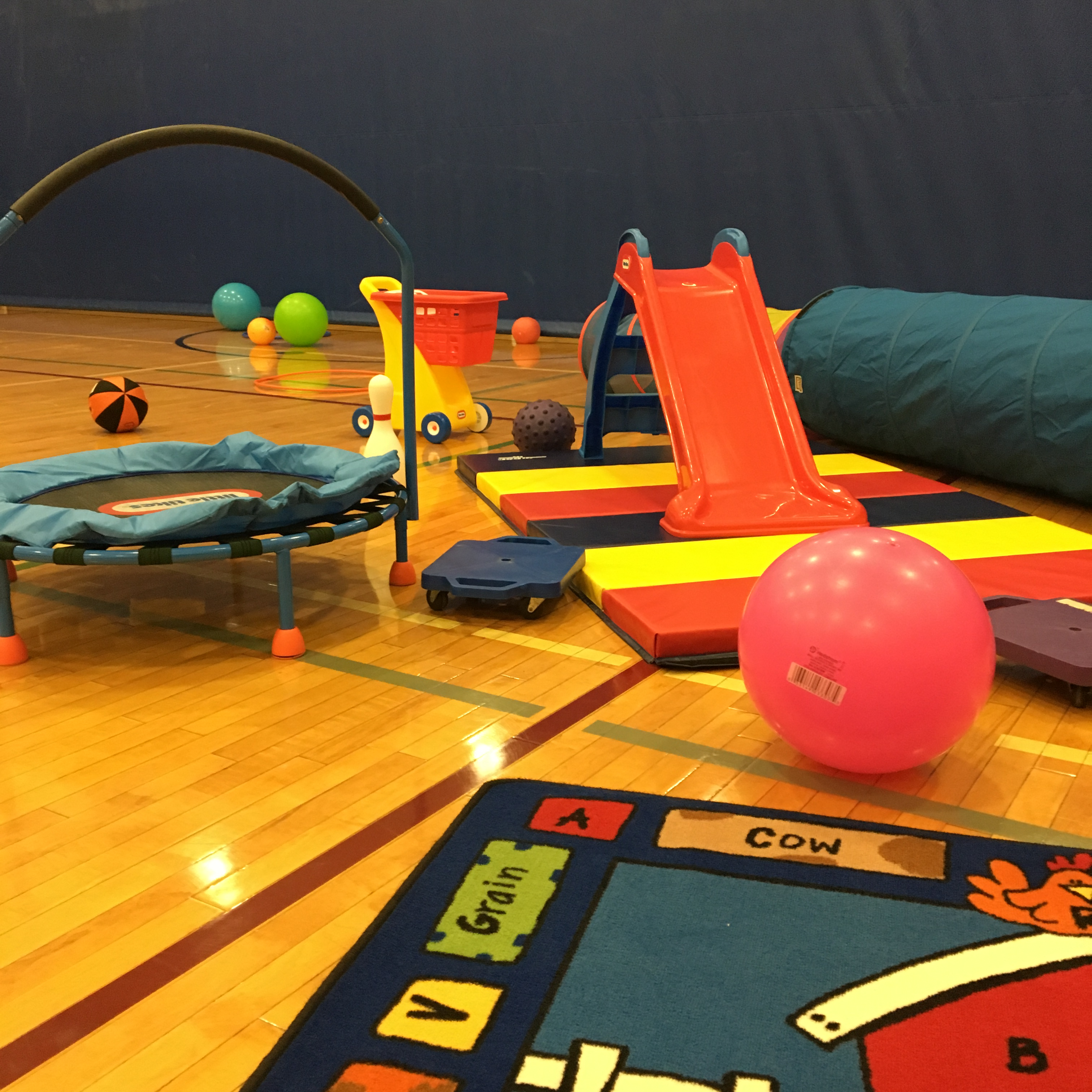 Toddler Open Gym